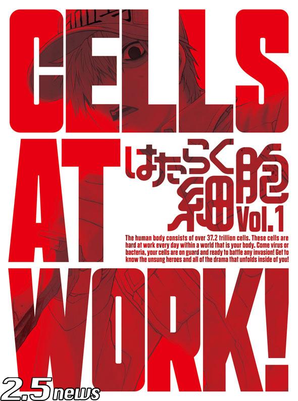 舞台『体内活劇「はたらく細胞」』